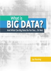 What Is Big Data ebook by Jay Kassing