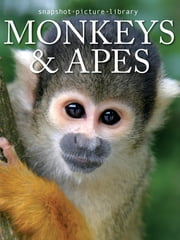 Monkeys & Apes ebook by Snapshot Picture Library
