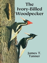 The Ivory-Billed Woodpecker ebook by James T. Tanner