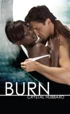 Burn ebook by Crystal Hubbard
