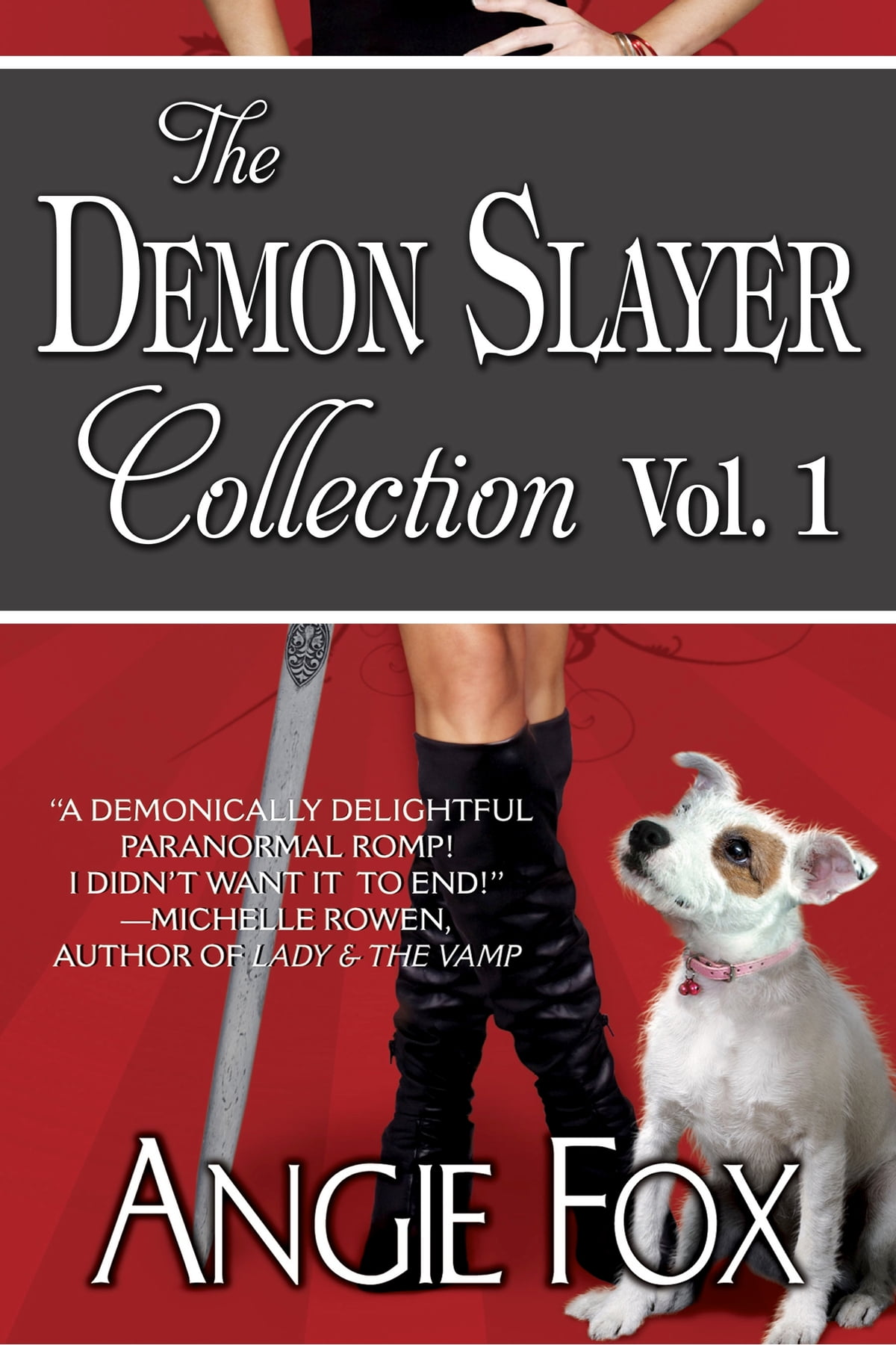 Accidental Demon Slayer Boxed Set Vol I (books 13) Ebook By Angie Fox  1230000116643
