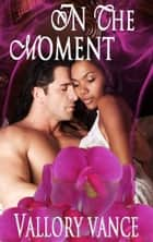 In The Moment ebook by Vallory Vance