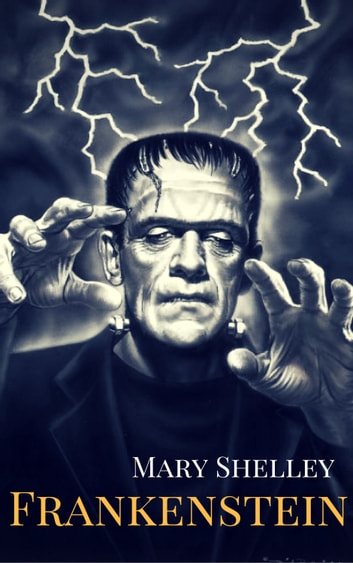 an overview of the novel frankenstein by mary shelley Far from the fantastic and improbable tale that mary shelley's frankenstein now seems to us, the novel was declared by one reviewer upon publication to have 'an air of reality attached to it, by being connected with the favourite projects and passions of the times.