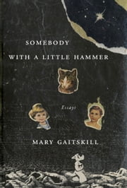 Somebody with a Little Hammer - Essays ebook by Mary Gaitskill