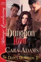Dungeon Love ebook by Cara Adams