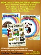 Sea Turtles, Pandas & Dogs: Pictures & Facts On Nature & Sea Animals ebook by Kate, Timmie Cruise, Guzzmann