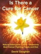 Is There a Cure for Cancer: Natural Alternative Cancer Treatments, Best Cancer Fighting Foods and Diet ebook by David Gaughan