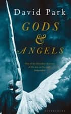 Gods and Angels ebook by David Park