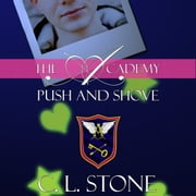 Push and Shove audiobook by C. L. Stone