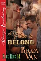 A Place to Belong ebook by Becca Van
