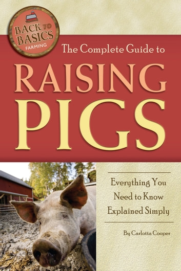 The Complete Guide To Raising Pigs Everything You Need To Know