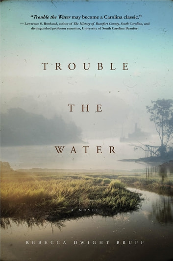 Trouble The Water - A NOVEL ebook by Rebecca Dwight Bruff