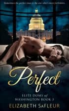 Perfect ebook door Elizabeth SaFleur