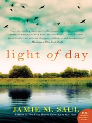 Light of Day - A Novel ebook by Jamie M. Saul