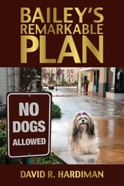 Bailey's Remarkable Plan ebook by David R. Hardiman