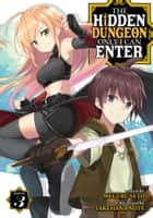 The Hidden Dungeon Only I Can Enter (Light Novel) Vol. 3 ebook by Meguru Seto, Takehana Note