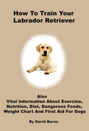 How To Train Your Labrador Retriever ebook by David Burns