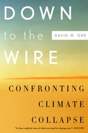 Down to the Wire - Confronting Climate Collapse ebook by David W. Orr
