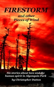 Firestorm and other Pieces of Wind ebook by Broken Walls Publishing