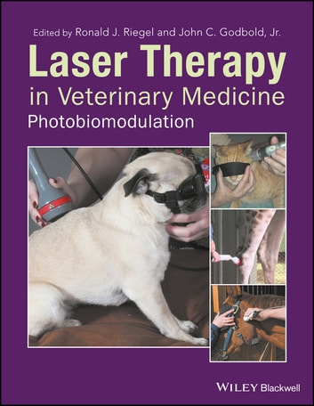the use of therapeutic laser in veterinary medicine as a form of treatment Of the relatively few contraindications for the use of therapeutic laser  treatment of children with therapeutic laser  of laser in surgery and medicine.