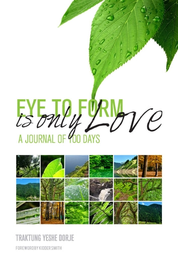 Eye To Form Is Only Love - A Journal of 100 Days ebook by Traktung Yeshe Dorje