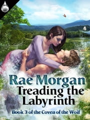 Treading the Labyrinth ebook by Rae Morgan