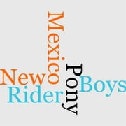 The Pony Rider Boys In New Mexico ebook by Frank Gee Patchin