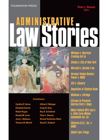 Administrative Law Stories ebook by Peter Strauss
