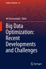 Big Data Optimization: Recent Developments and Challenges ebook by Ali Emrouznejad