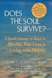 Does the Soul Survive?: A Jewish Journey to Belief in Afterlife, Past Lives & Living with Purpose ebook by Rabbi Elie Kaplan Spitz