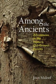 Among the Ancients: Adventures in the Eastern Old-Growth Forests ebook by Joan Maloof