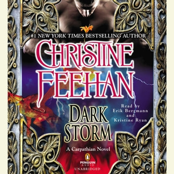 Dark Storm audiobook by Christine Feehan