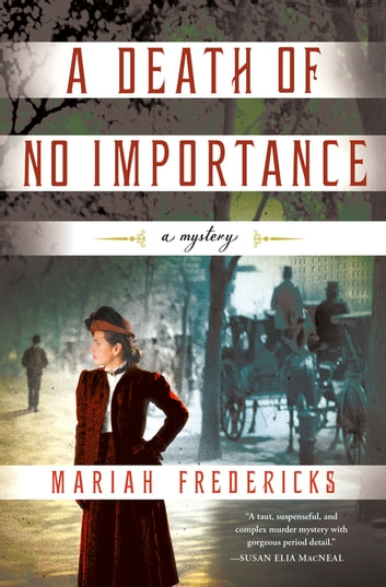 A Death of No Importance - A Mystery ebook by Mariah Fredericks