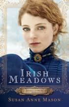 Irish Meadows (Courage to Dream Book #1) ebook by Susan Anne Mason