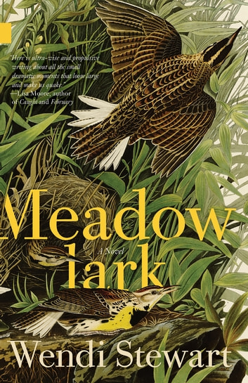 Meadowlark ebook by Wendi Stewart