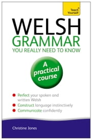 Welsh Grammar You Really Need to Know: Teach Yourself ebook by Christine Jones