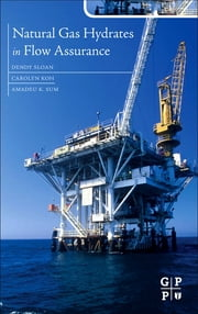 Natural Gas Hydrates in Flow Assurance ebook by E Dendy Sloan