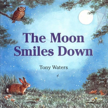 The Moon Smiles Down ebook by Tony Waters