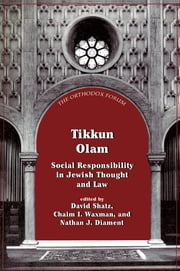 Tikkun Olam - Social Responsibility in Jewish Thought and Law ebook by David Shatz,Chaim I. Waxman,Nathan J. Diament
