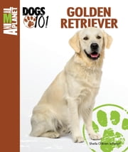 Golden Retriever ebook by Sheila O'Brien Schimpf