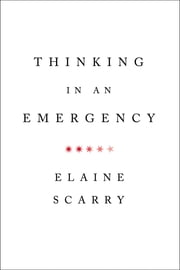 Thinking in an Emergency (Norton Global Ethics Series) ebook by Elaine Scarry