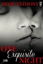 One Exquisite Night ebook by Annie Anthony