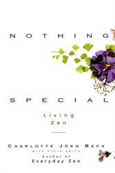 Nothing Special ebook by Charlotte J. Beck,Steven A. Smith