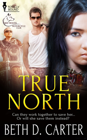 True North 電子書 by Beth D. Carter