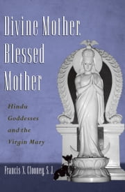Divine Mother, Blessed Mother: Hindu Goddesses and the Virgin Mary ebook by Francis Clooney
