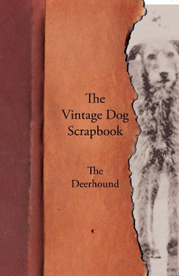 The Vintage Dog Scrapbook - The Deerhound ebook by Various Authors