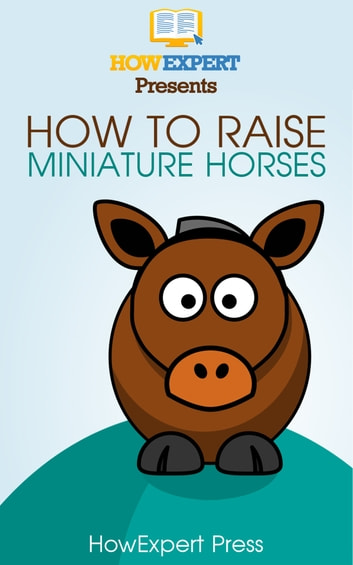 How To Raise Miniature Horses Your Step By Step Guide To Raising