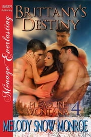 Brittany's Destiny ebook by Melody Snow Monroe