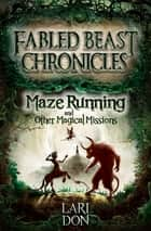 Maze Running and other Magical Missions ebook by Lari Don
