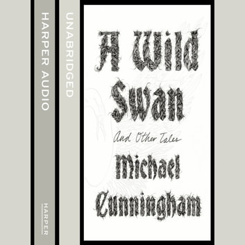 A Wild Swan: And Other Tales audiobook by Michael Cunningham